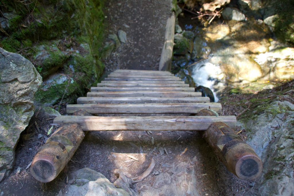 Steep Ravine Trail Ladder - Mt. Tam