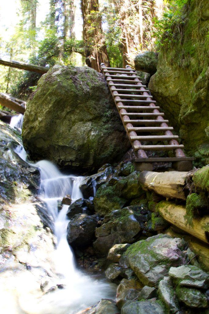 Steep Ravine Trail Ladder - Mt. Tam