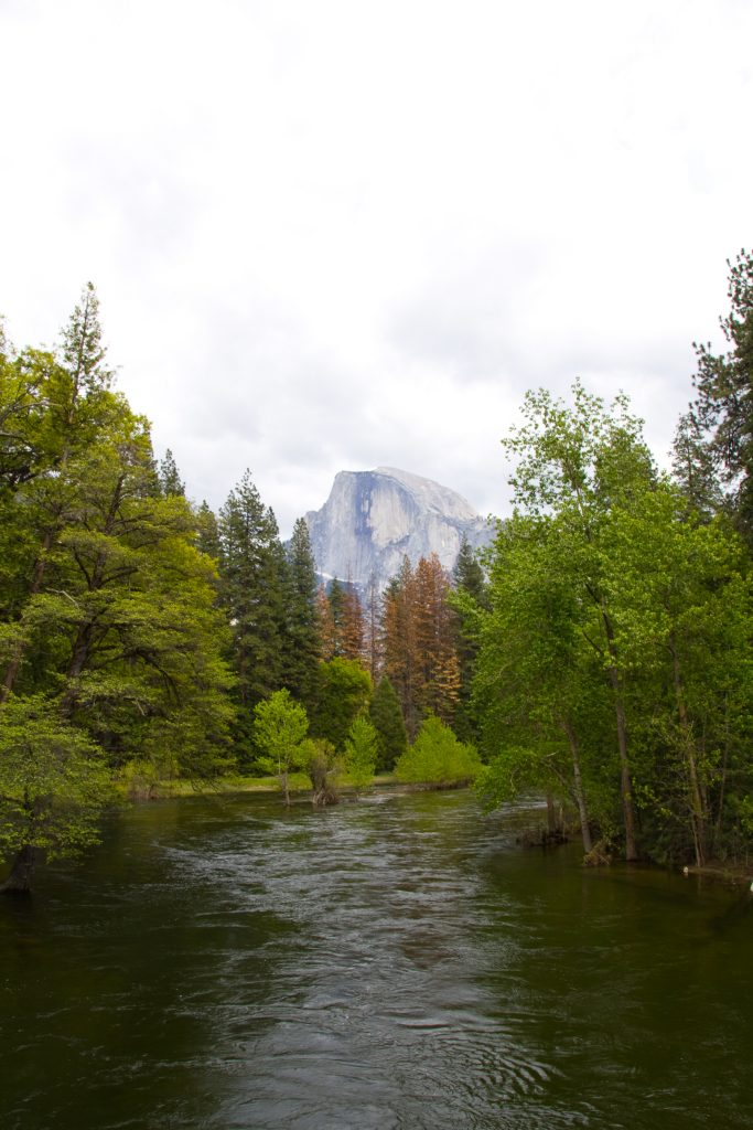 Half Dome Above Merced River