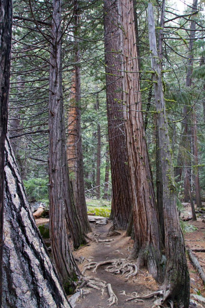 Mist Trail - Yosemite
