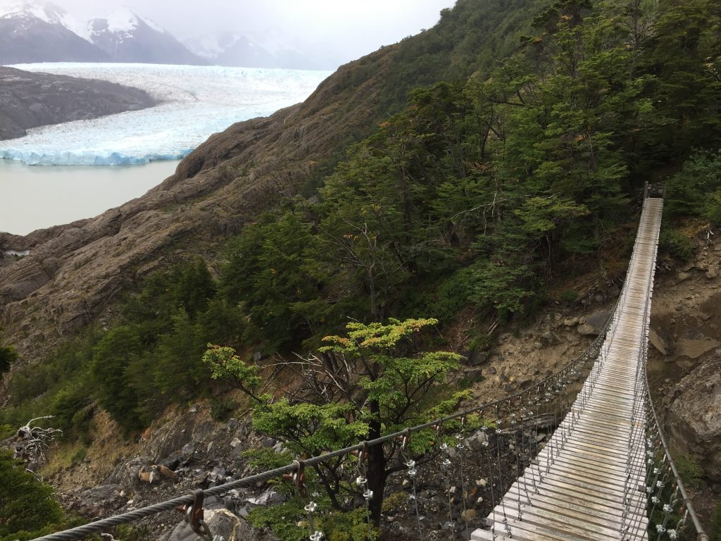 View of Glacier Grey from Suspension Bridge